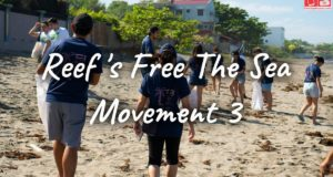 Reef's Free The Sea Movement 3